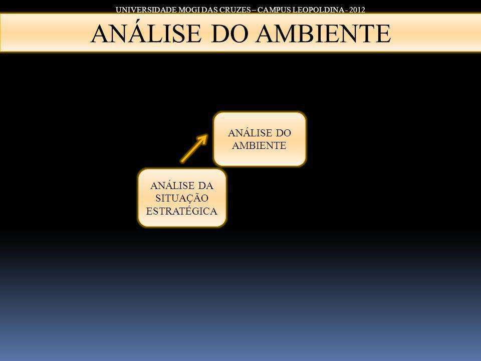 ANÁLISE DO AMBIENTE ANÁLISE DO AMBIENTE