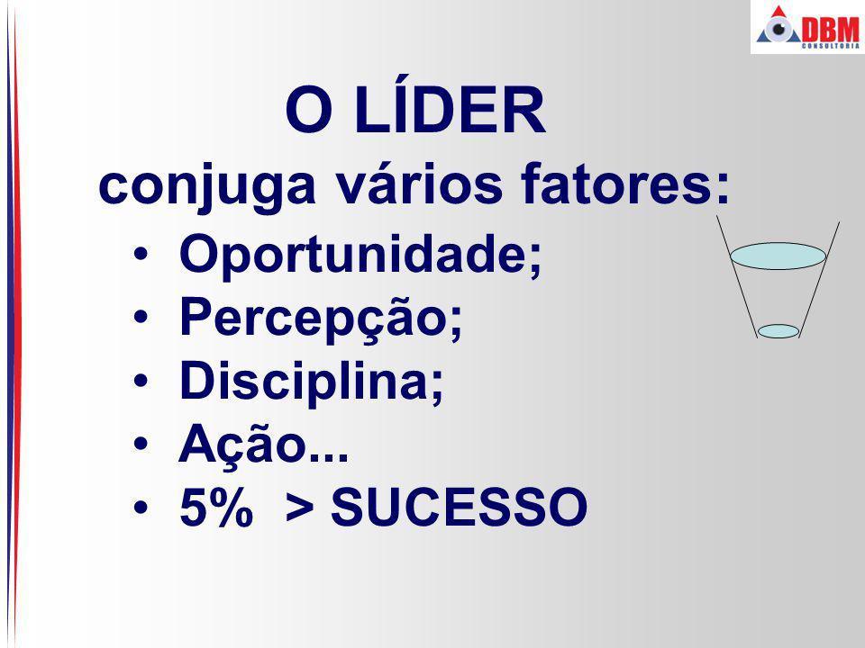 O LÍDER conjuga vários fatores: