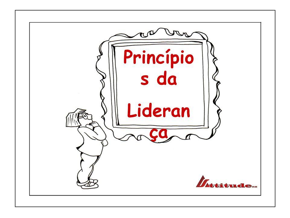 Princípios da Liderança