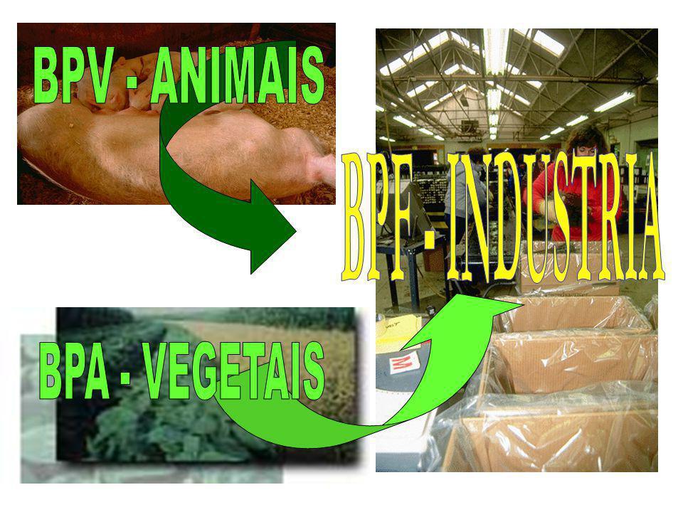 BPV - ANIMAIS BPF - INDUSTRIA BPA - VEGETAIS