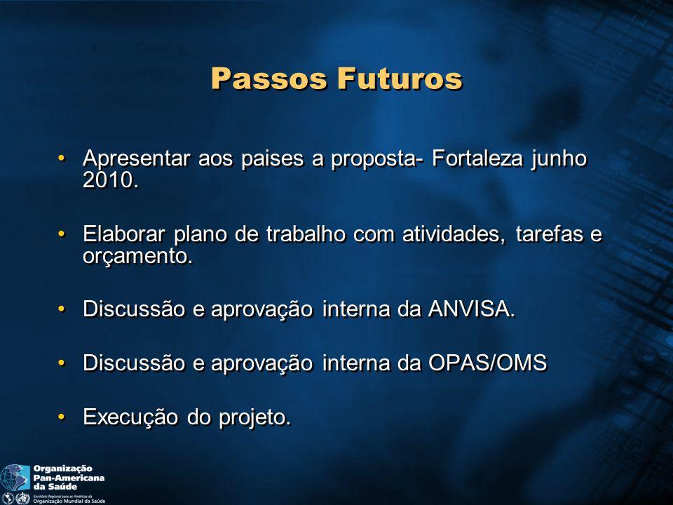 Passos Futuros Apresentar aos paises a proposta- Fortaleza junho 2010.