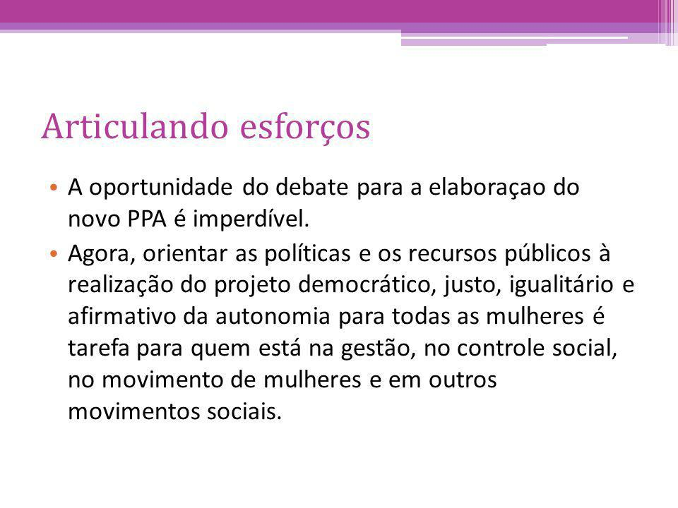 Articulando esforços A oportunidade do debate para a elaboraçao do novo PPA é imperdível.