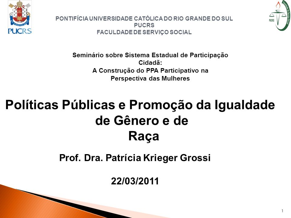Políticas Públicas e Promoção da Igualdade de Gênero e de Raça