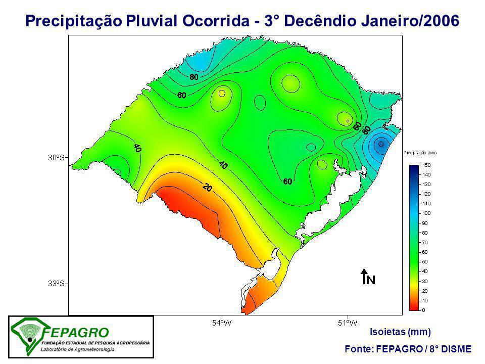Precipitação Pluvial Ocorrida - 3° Decêndio Janeiro/2006