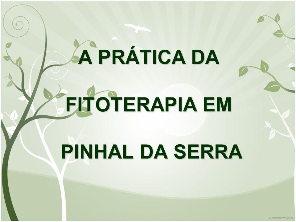 A PRÁTICA DA FITOTERAPIA EM PINHAL DA SERRA