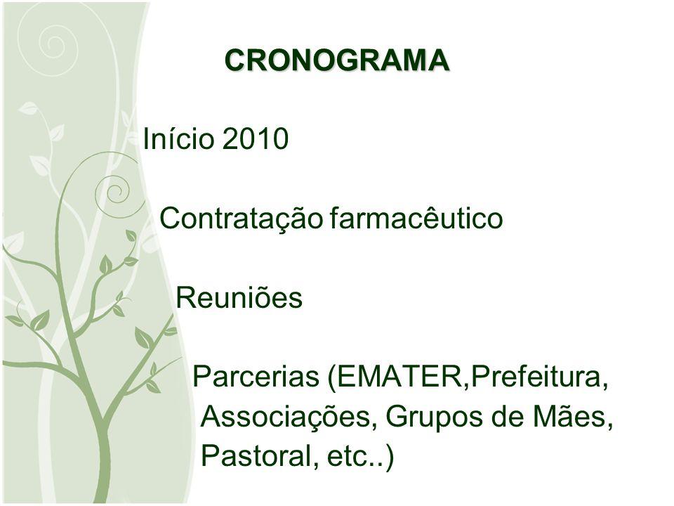 CRONOGRAMA Início 2010. Contratação farmacêutico. Reuniões. Parcerias (EMATER,Prefeitura, Associações, Grupos de Mães,