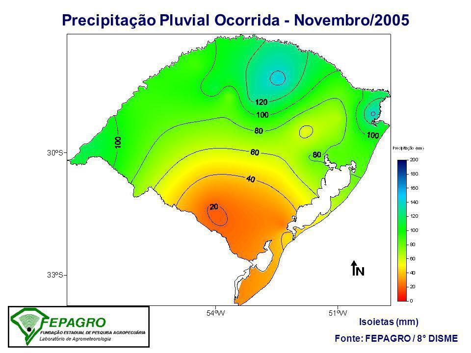 Precipitação Pluvial Ocorrida - Novembro/2005