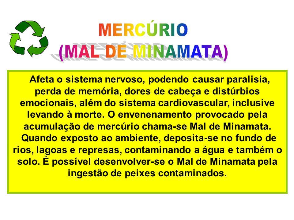 MERCÚRIO (MAL DE MINAMATA)