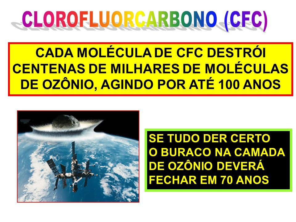 CLOROFLUORCARBONO (CFC)