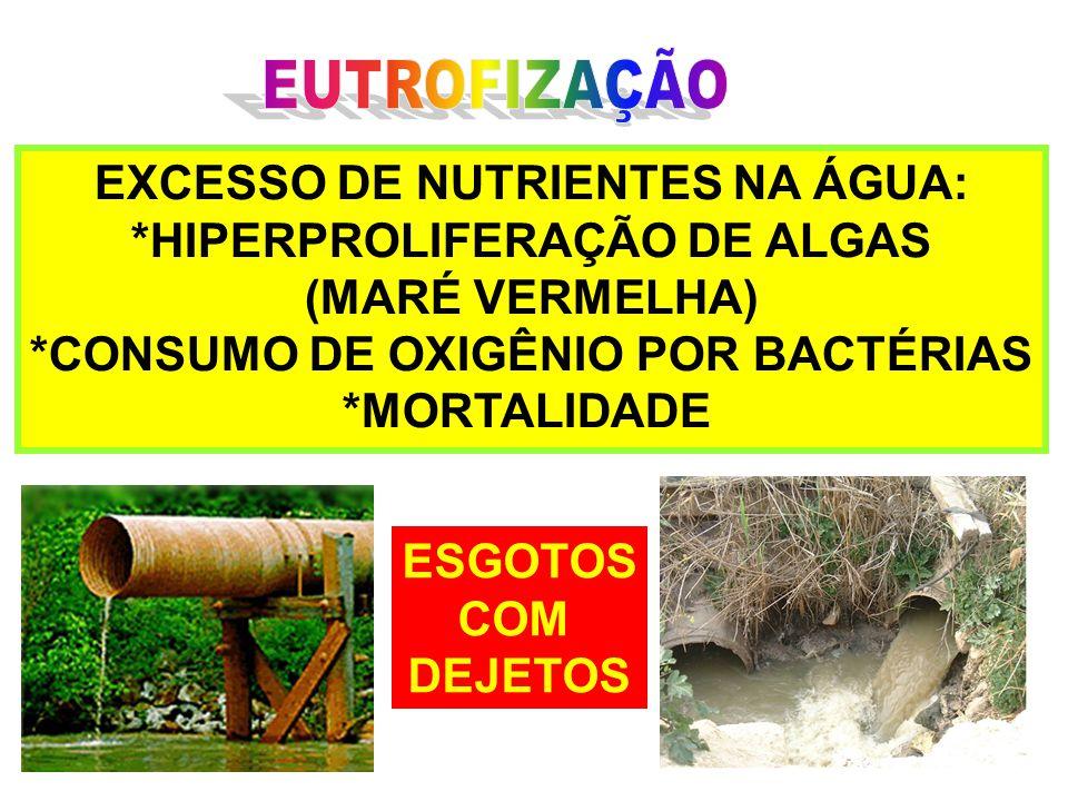 EUTROFIZAÇÃO EXCESSO DE NUTRIENTES NA ÁGUA: