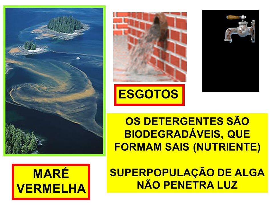 FORMAM SAIS (NUTRIENTE) SUPERPOPULAÇÃO DE ALGA