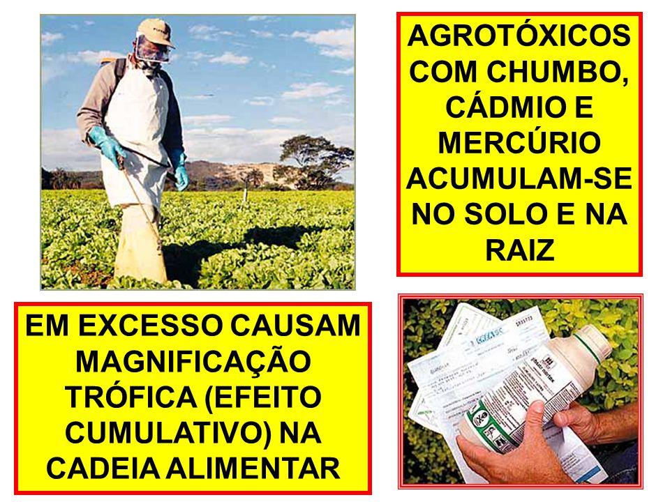 AGROTÓXICOS COM CHUMBO, CÁDMIO E. MERCÚRIO. ACUMULAM-SE. NO SOLO E NA. RAIZ. EM EXCESSO CAUSAM.