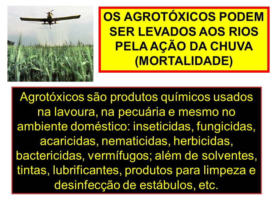 OS AGROTÓXICOS PODEM SER LEVADOS AOS RIOS. PELA AÇÃO DA CHUVA. (MORTALIDADE)