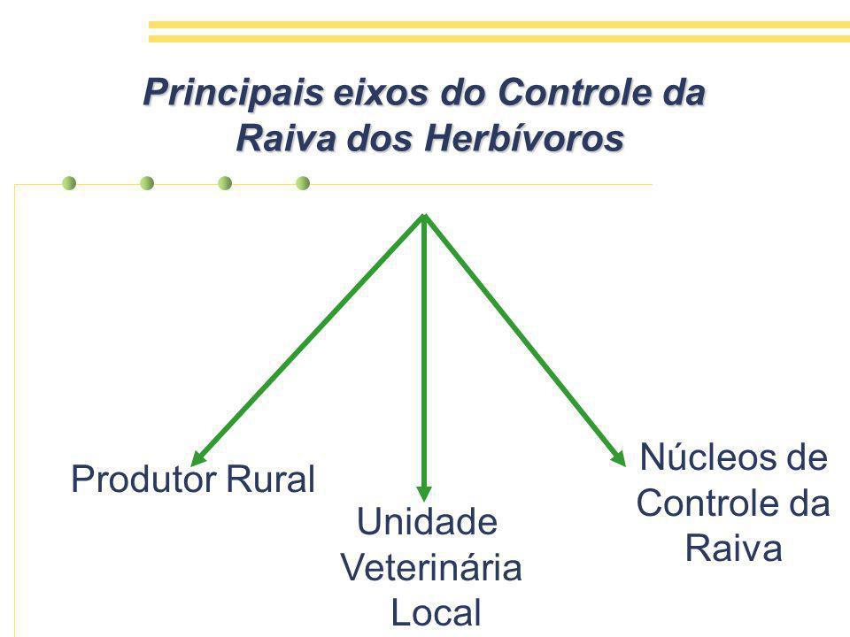 Principais eixos do Controle da