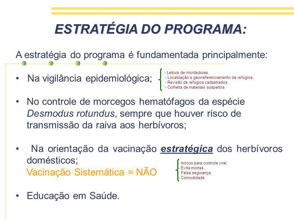 ESTRATÉGIA DO PROGRAMA: