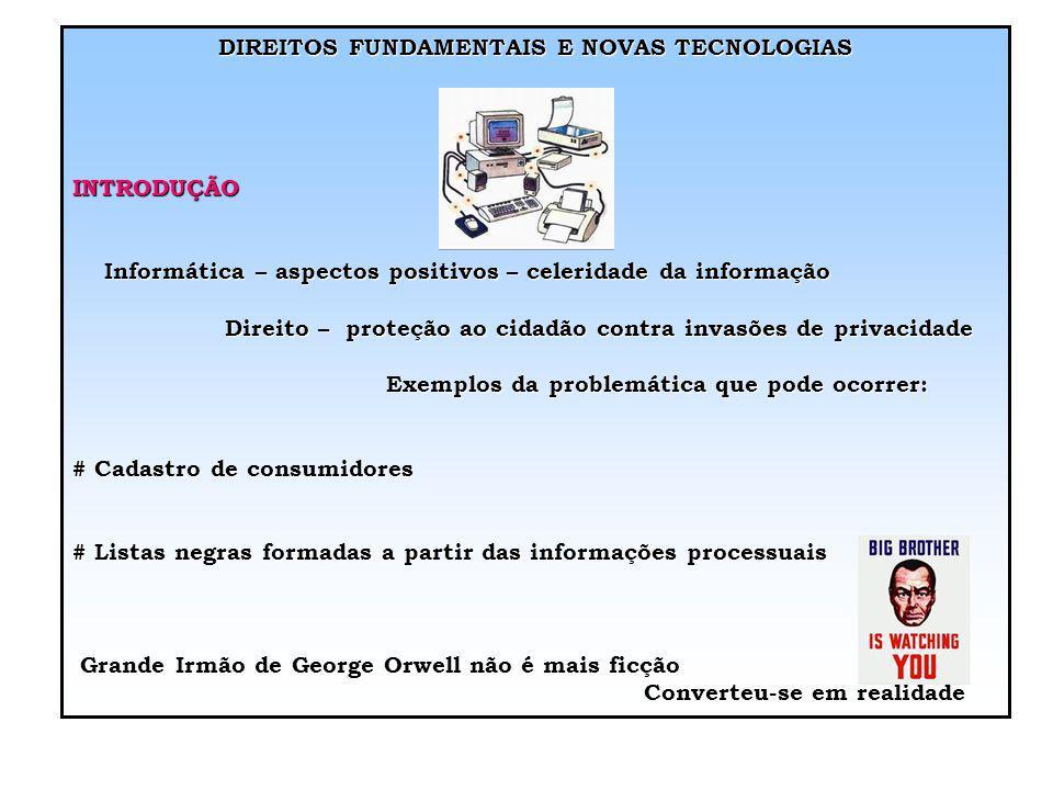 DIREITOS FUNDAMENTAIS E NOVAS TECNOLOGIAS