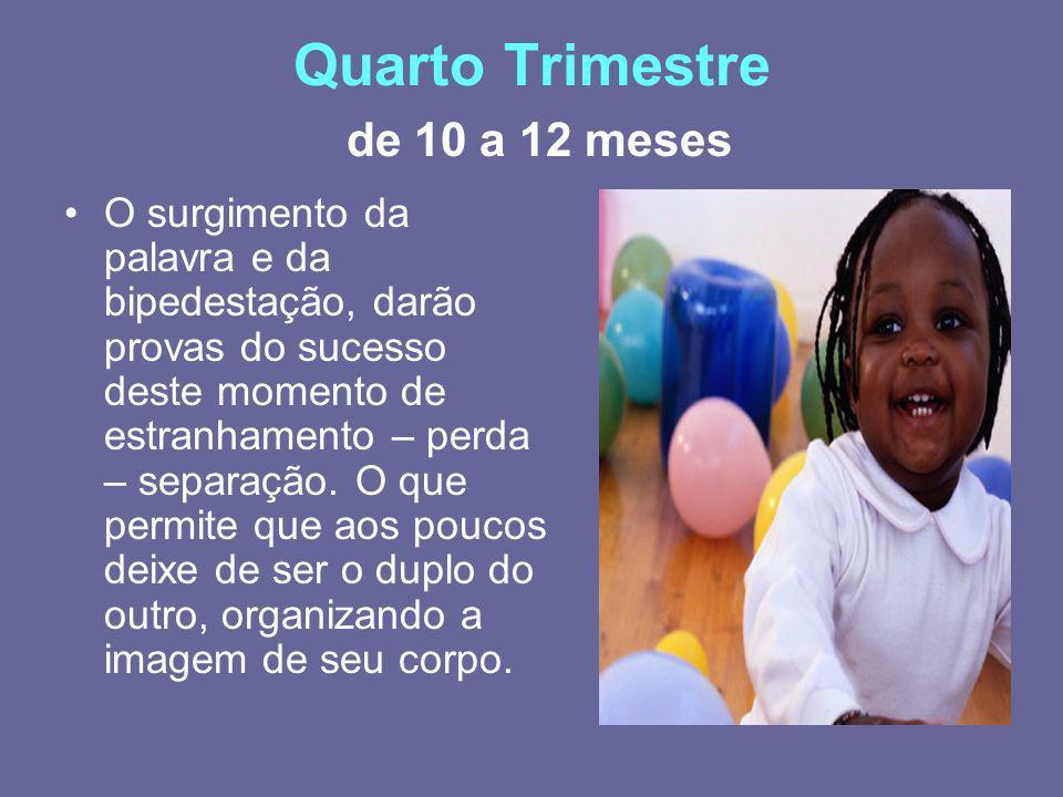 Quarto Trimestre de 10 a 12 meses
