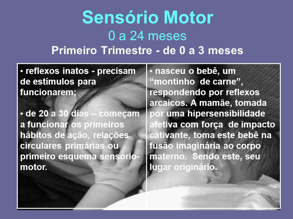 Sensório Motor 0 a 24 meses Primeiro Trimestre - de 0 a 3 meses