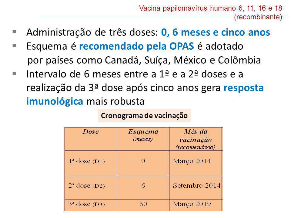 Administração de três doses: 0, 6 meses e cinco anos