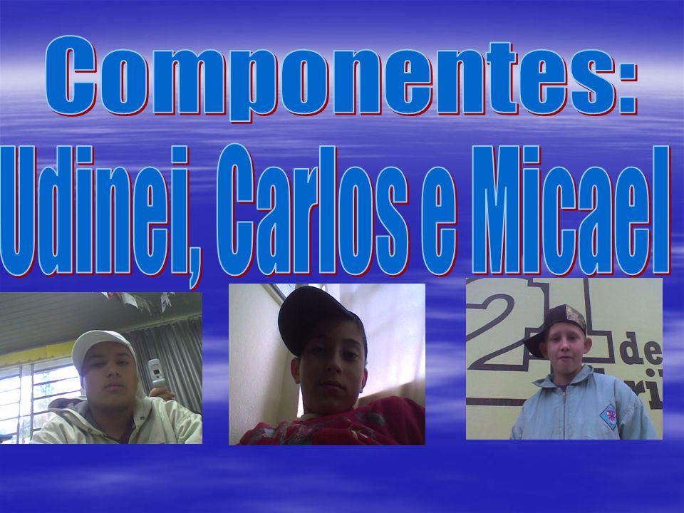 Componentes: Udinei, Carlos e Micael