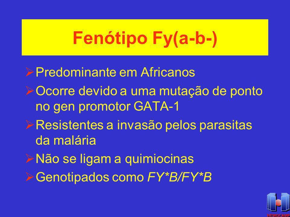 Fenótipo Fy(a-b-) Predominante em Africanos
