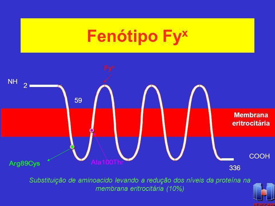 Fenótipo Fyx Fyx NH 2 59 Membrana eritrocitária COOH Ala100Thr