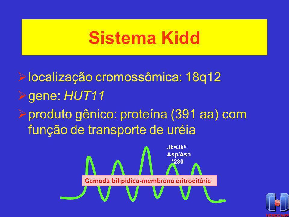 Sistema Kidd localização cromossômica: 18q12 gene: HUT11