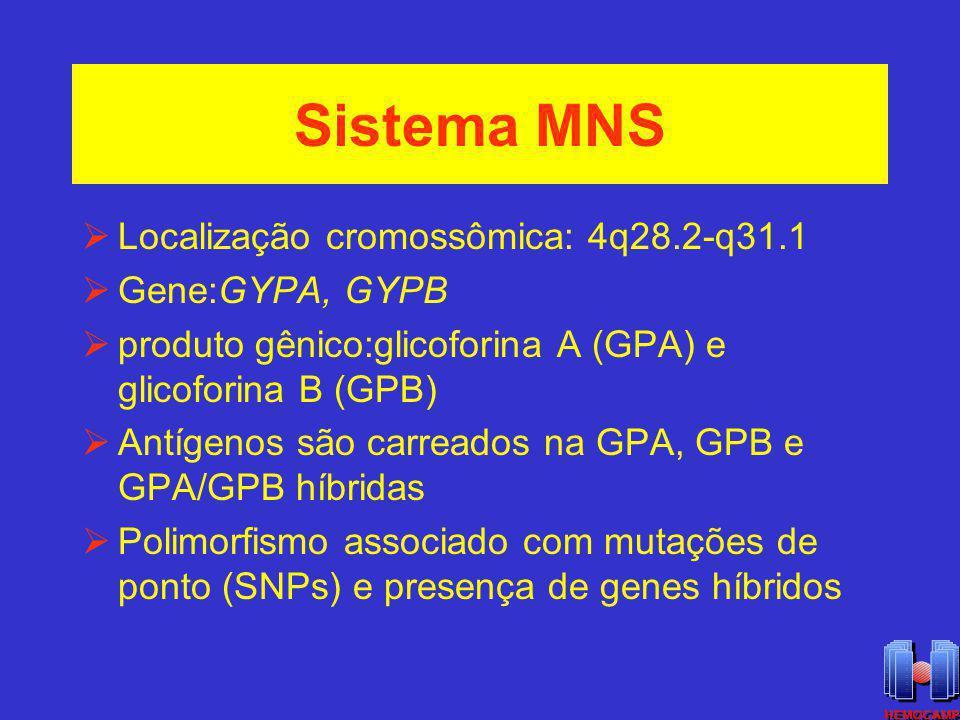 Sistema MNS Localização cromossômica: 4q28.2-q31.1 Gene:GYPA, GYPB
