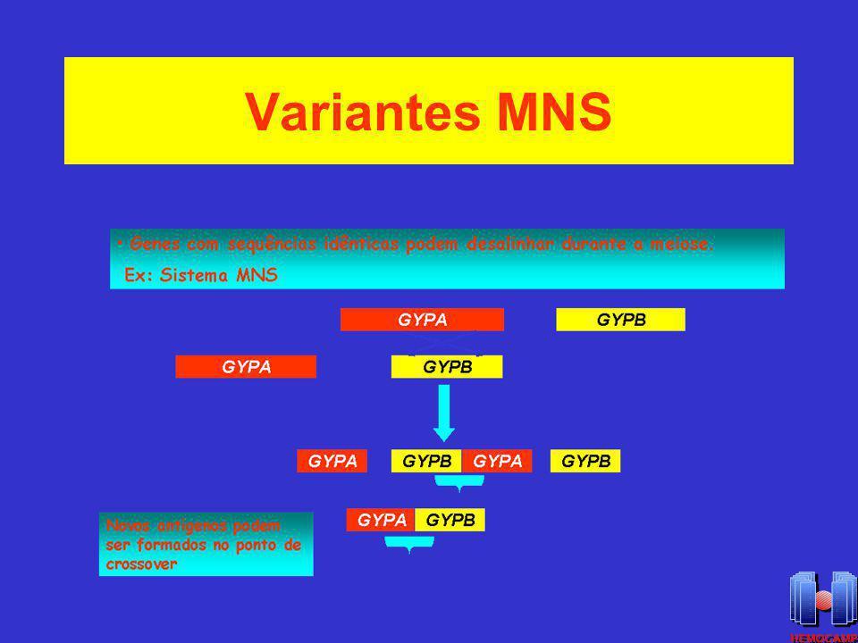 Variantes MNS
