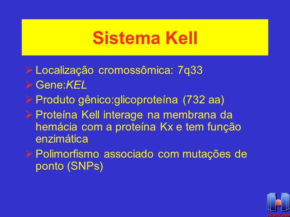 Sistema Kell Localização cromossômica: 7q33 Gene:KEL