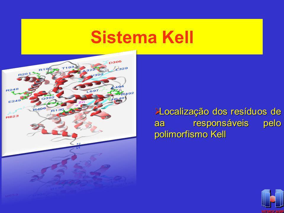 Sistema Kell Localização dos resíduos de aa responsáveis pelo polimorfismo Kell