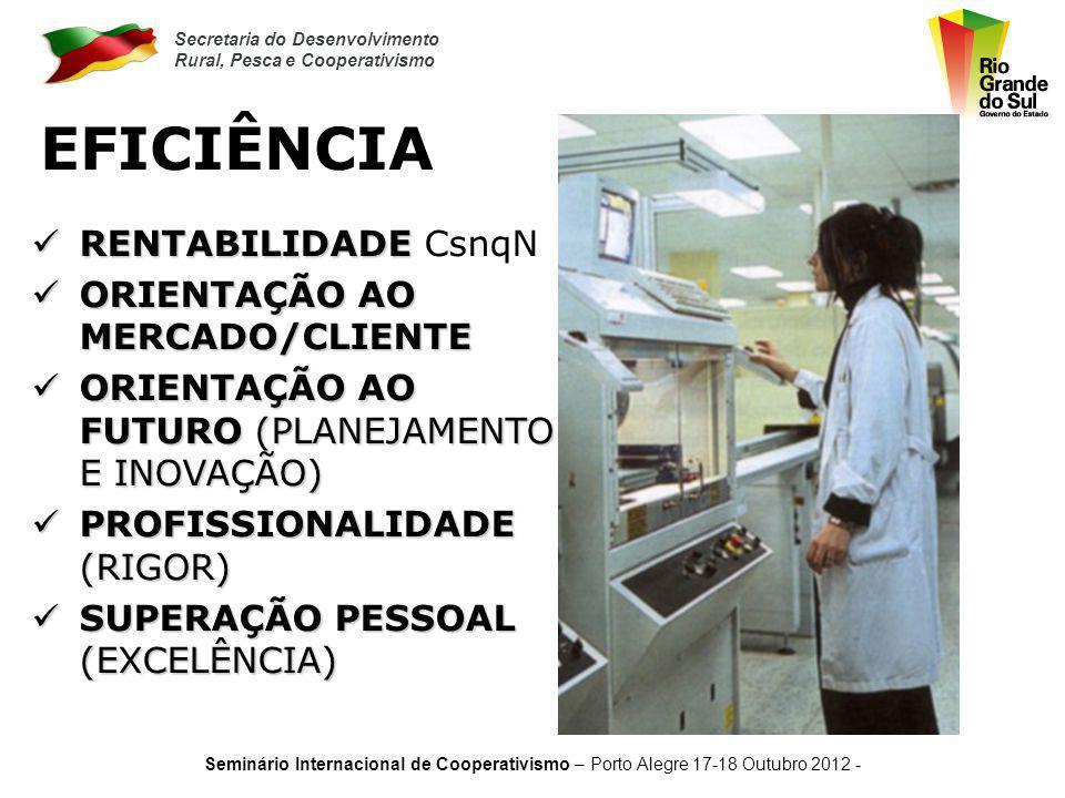 EFICIÊNCIA RENTABILIDADE CsnqN ORIENTAÇÃO AO MERCADO/CLIENTE