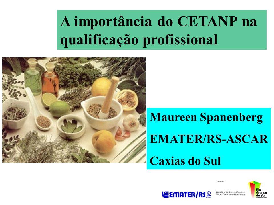 A importância do CETANP na qualificação profissional