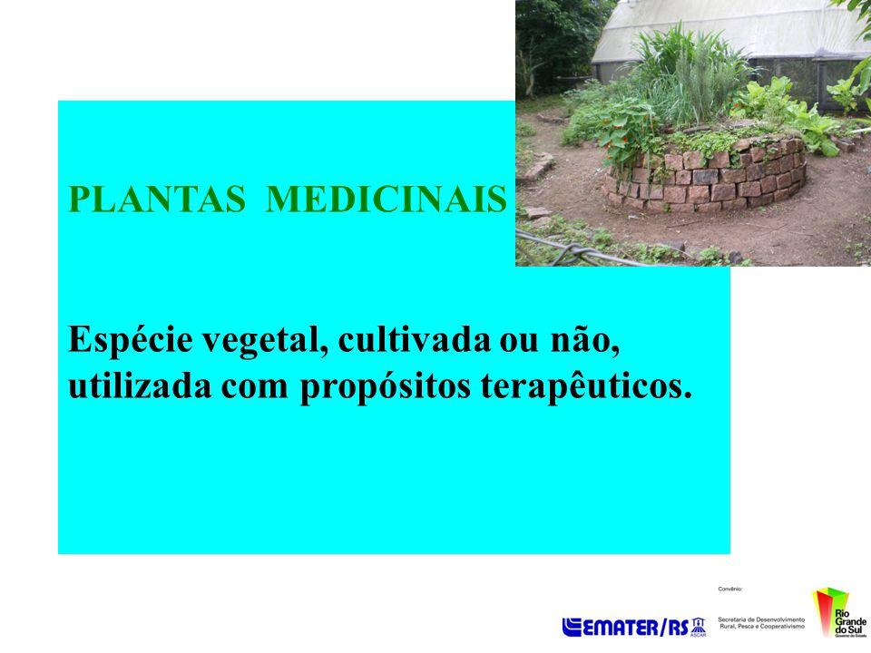 PLANTAS MEDICINAIS Espécie vegetal, cultivada ou não, utilizada com propósitos terapêuticos.