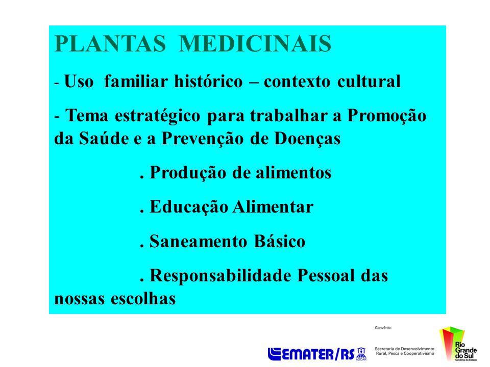 PLANTAS MEDICINAIS Uso familiar histórico – contexto cultural. Tema estratégico para trabalhar a Promoção da Saúde e a Prevenção de Doenças.