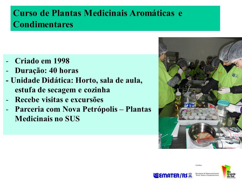 Curso de Plantas Medicinais Aromáticas e Condimentares