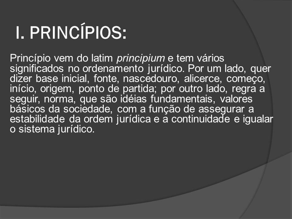 I. PRINCÍPIOS: