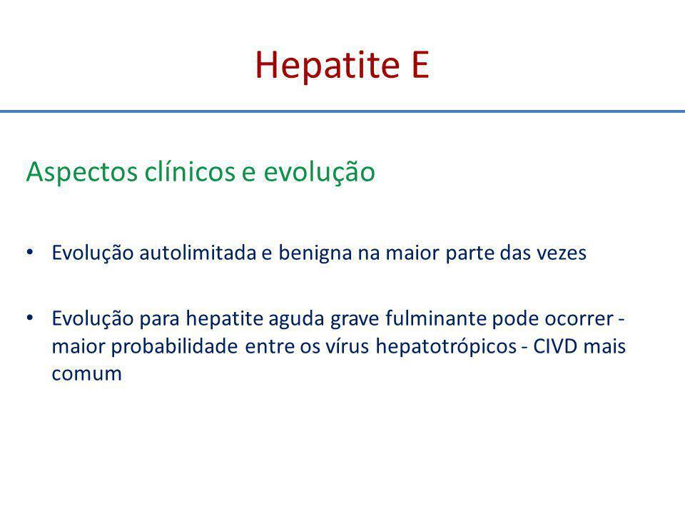 Hepatite E Aspectos clínicos e evolução