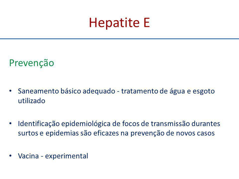 Hepatite E Prevenção. Saneamento básico adequado - tratamento de água e esgoto utilizado.