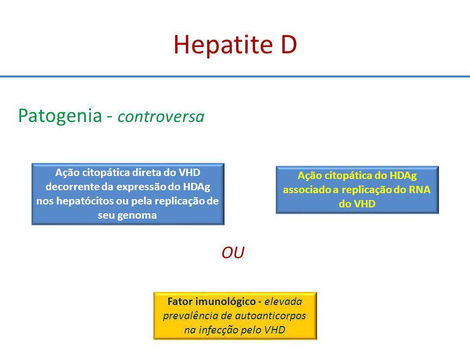 Ação citopática do HDAg associado a replicação do RNA do VHD