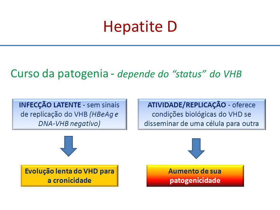 Evolução lenta do VHD para a cronicidade Aumento de sua patogenicidade
