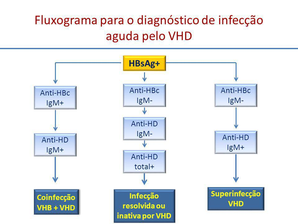 Fluxograma para o diagnóstico de infecção aguda pelo VHD