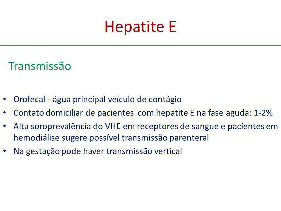 Hepatite E Transmissão Orofecal - água principal veículo de contágio