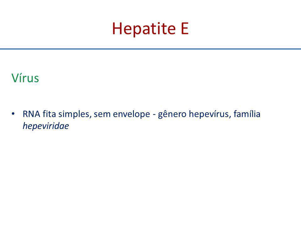 Hepatite E Vírus RNA fita simples, sem envelope - gênero hepevírus, família hepeviridae