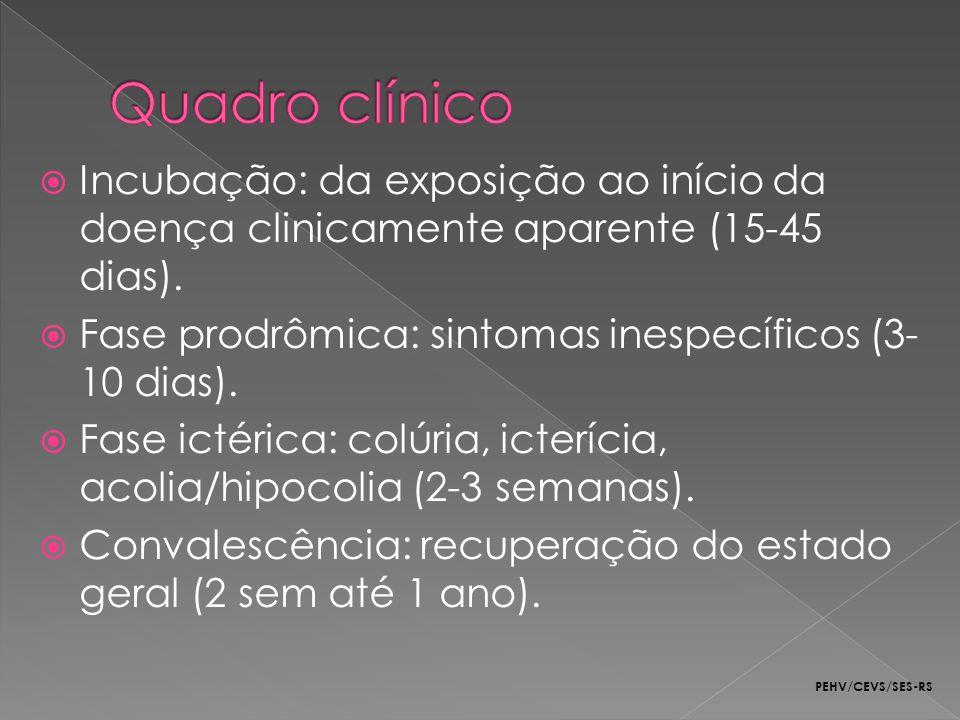 Quadro clínico Incubação: da exposição ao início da doença clinicamente aparente (15-45 dias). Fase prodrômica: sintomas inespecíficos (3-10 dias).