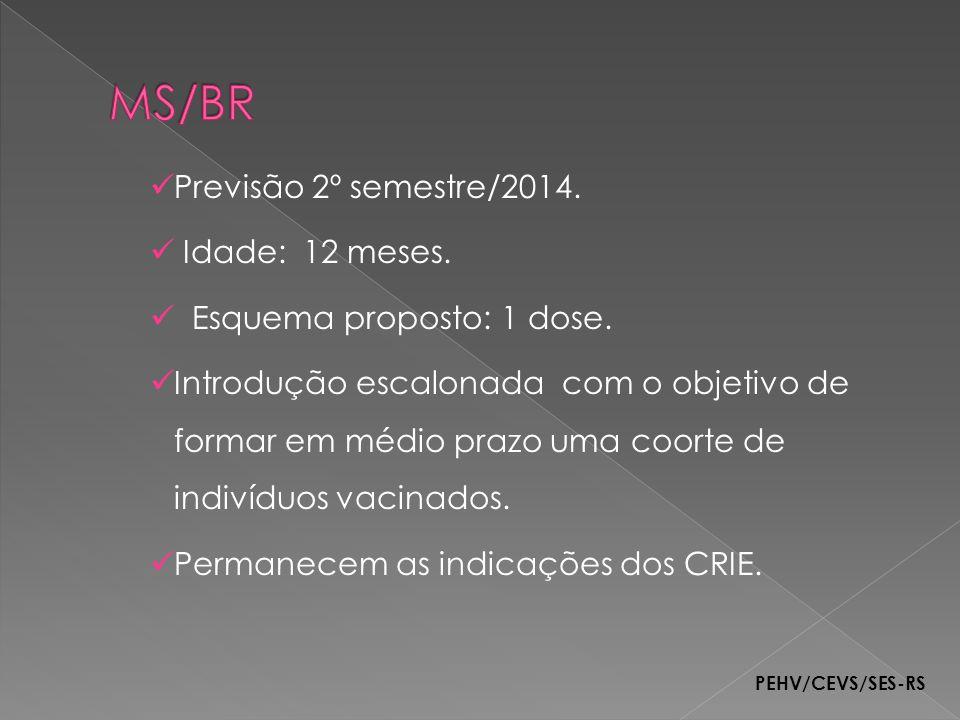 MS/BR Previsão 2º semestre/2014. Idade: 12 meses.