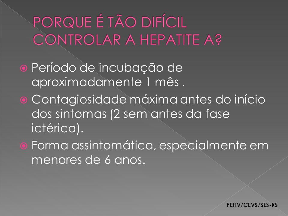 PORQUE É TÃO DIFÍCIL CONTROLAR A HEPATITE A