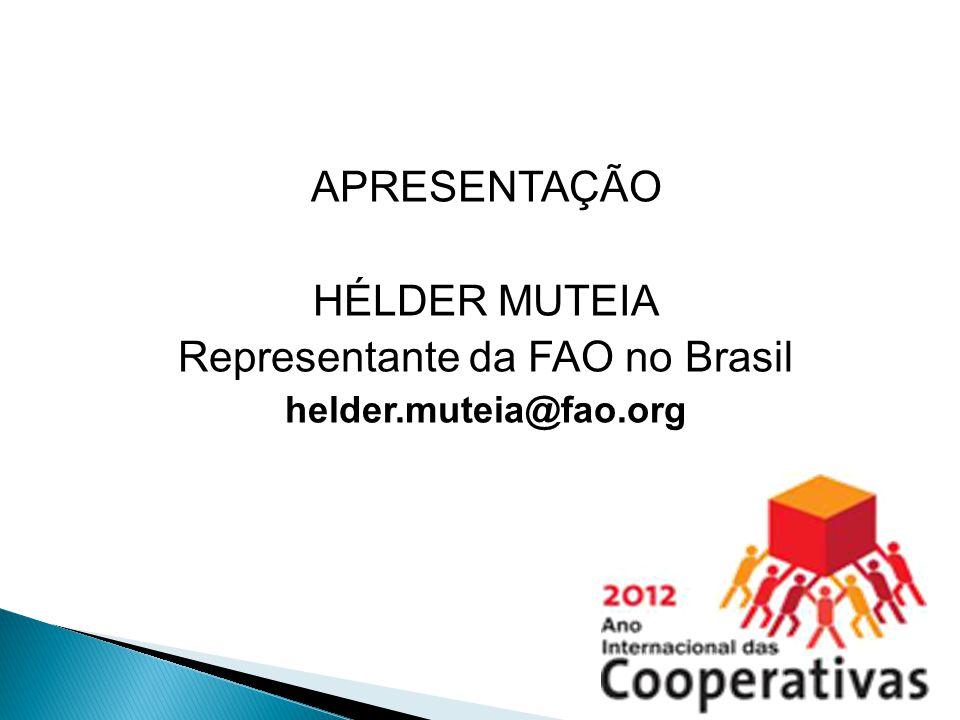 Representante da FAO no Brasil