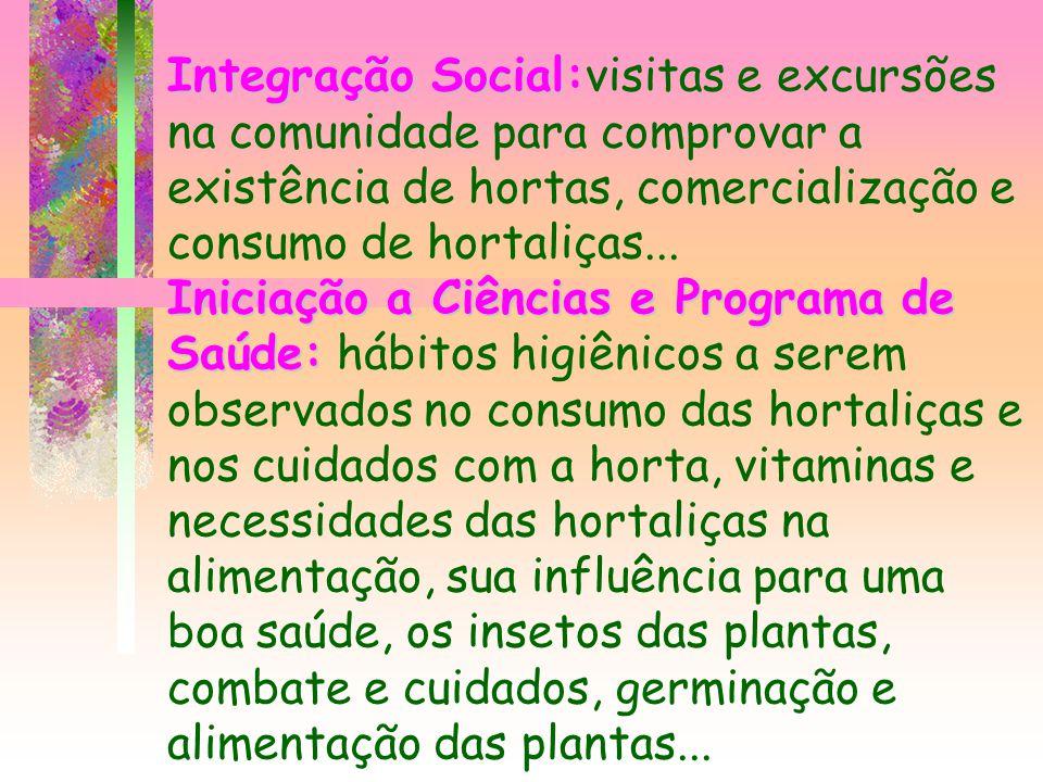 Integração Social:visitas e excursões na comunidade para comprovar a existência de hortas, comercialização e consumo de hortaliças...