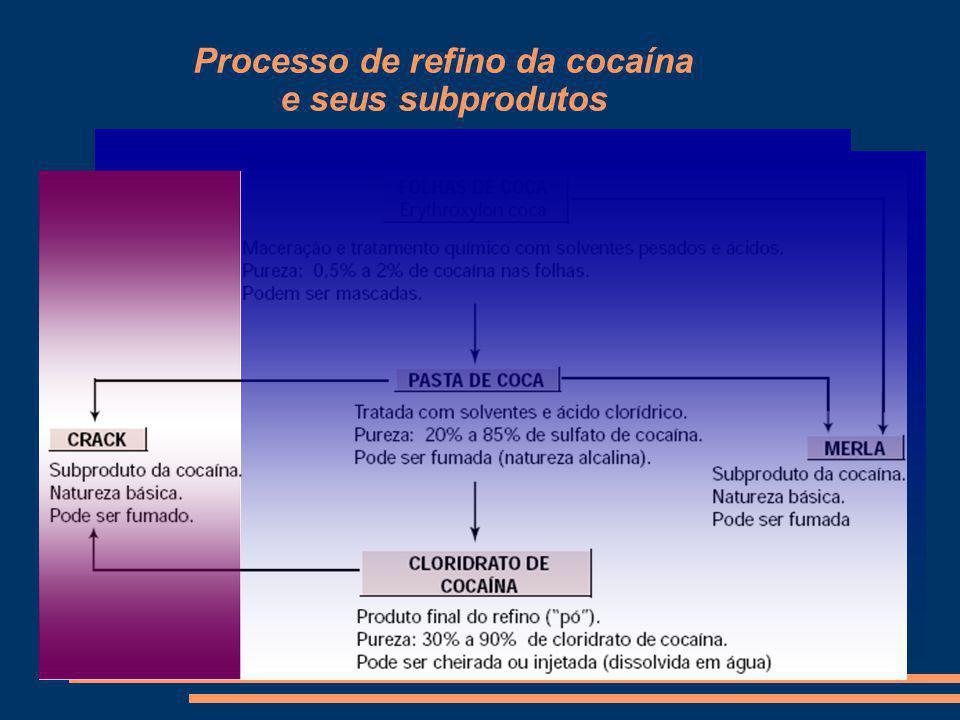 Processo de refino da cocaína e seus subprodutos